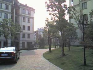 2006_1115_03