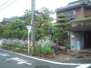 2009_0517_06
