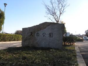 2010_0208_01