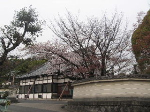 2010_0401_03
