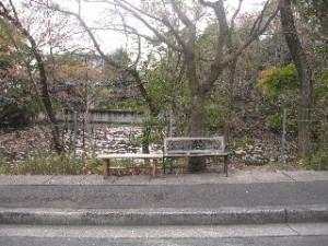 2010_0401_05