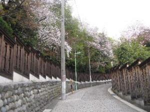 2010_0401_06