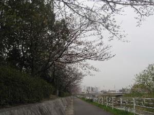 2010_0401_11