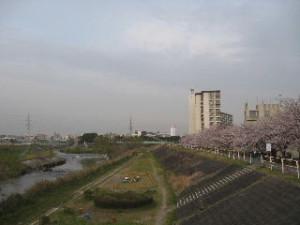 2010_0401_19