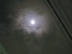20111210_0014