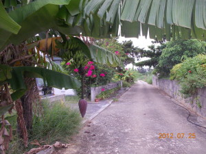 20120725_0225