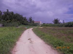20120725_0228