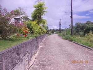 20120725_0229
